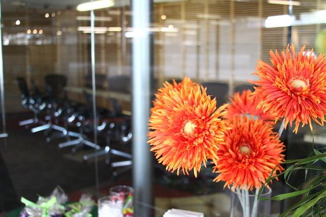 Goodmans Flowers